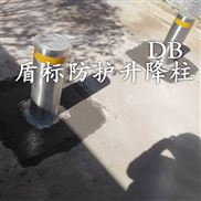 供应广东路障机升降柱,液压防恐路障桩厂家