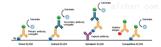 人组织因子途径抑制物elisa检测试剂盒