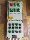 BXK制药厂铸铝防爆按钮控制箱厂家