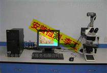 深圳汽车用铸锻毛坯件低倍组织检测-