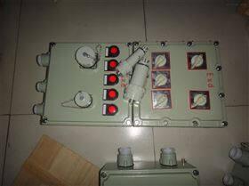 BXX51-2K40防爆检修箱