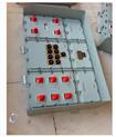 电伴热(带)防爆控制箱