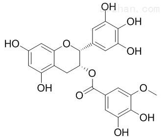 3 O 甲基表没食子儿茶素mei食子酸酯