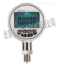 M392123数字压力表 XJ11/CWY122  库号:M392123