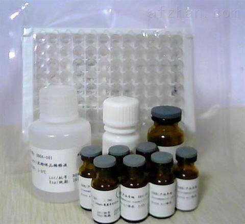 IL-27人鼠动物试剂盒,白介素27