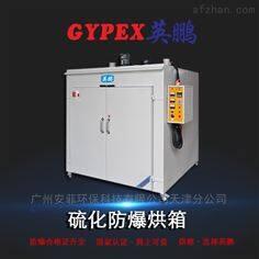 定制款非标定制硫化防爆干燥箱