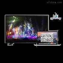 电影级雷电调色监视器DL-2150T