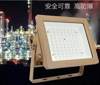 FB0101FSL佛山照明50W100W200W化工煤矿LED防爆灯