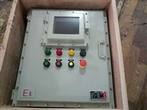 现场防爆仪表控制箱BXK-T带可视窗口