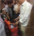 低壓兆歐表/等電位連接測試儀