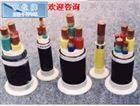 ZB-JVP2V大同特种信号电缆