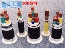 (福安市)(ZR-JYPVP22信號電纜)(三陽化工)
