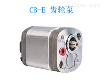 瑞士Bucher齿轮泵QT51-080R选型指导