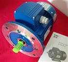 Y2-71M1-4 0.25KWY2-71M1-4紫光四级三相电机