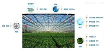 蜂窩物聯-溫室大棚物聯網解決方案