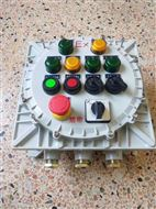 防爆IIC级控制箱铝合金配电箱