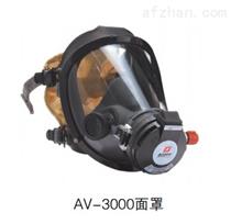 上海依格空气呼吸器 全面罩AV3000依格厂家