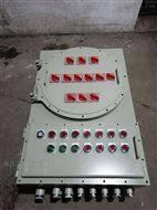 防爆IIC级配电箱照明配电柜