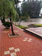 低价批发路面透水砖/人行道生态陶瓷颗粒砖8