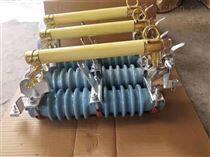 南宁供应户外交流高压跌落式熔断器RW11-12