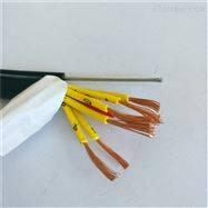 电动葫芦手柄线 KVVRC弹性体电缆