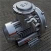EX-G-21500W 化工、食品机械用高压防爆鼓风机